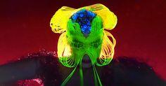 Bjork Crumbles, Mutates in Psychedelic 'Notget' Video  http://www.rollingstone.com/music/news/bjork-crumbles-mutates-in-psychedelic-notget-video-w486071