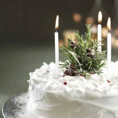 evergreen xmas cake,