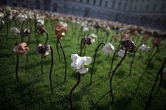 Out of Sync: 10,000 Clay Flowers Installation by Fernando Casasempere