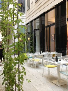 """See 77 photos from 751 visitors about healthy food, flying breakfast, and cozy. """"Attractive, upmarket bistro and wine bar serving a modern,. Ali Baba, Outdoor Furniture Sets, Outdoor Decor, Vienna, Lust, Modern, Wedding, Home Decor, Valentines Day Weddings"""