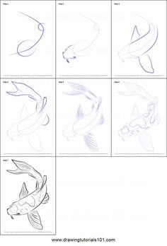 How To Draw Fish Step By Step Animals 29 Best Ideas Koi Fish Drawing, Fish Drawings, Art Drawings Sketches, Animal Drawings, Cool Drawings, Drawing Animals, Art Koi, Fish Art, Step By Step Sketches