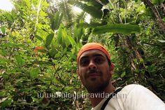 Iwokrama Canopy, Guyana. Más información en http://blogpuravida.com