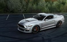 Ford Mustangs G A S 2015 Ford Mustang The Car