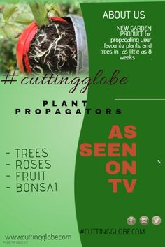 Design created with PosterMyWall Tree Saw, Propagation, New Product, Globe, Fruit, Plants, Design, Lawn And Garden, Speech Balloon