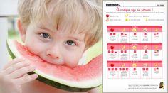 Un tableau des portions quotidiennes recommandées dans chaque groupe d'aliments en fonction de l'âge de l'enfant : légumes et fruits, viande, poisson, œufs, céréales, pommes de terre, légumes secs, produits laitiers…