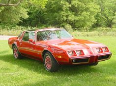 """1979 pontiac firebird redbird 