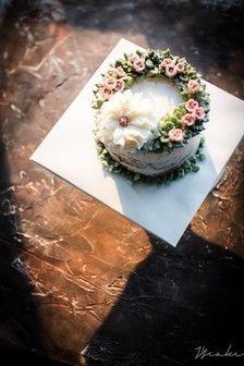 蛋糕大家族_太阳花的故事图片专辑-堆糖