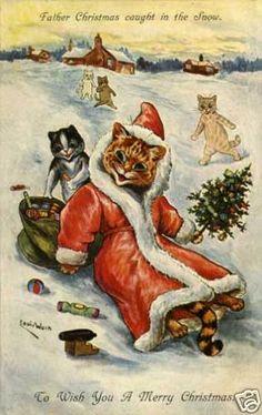 sledding Santa Cat!