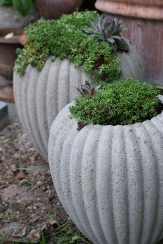 .love the line on these pots