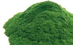 El alga clorela se conoce por su facilidad para eliminar las toxinas del cuerpo.