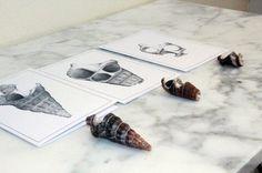 Peter Tugwell-Drawing artist #sketch #sketching #draw #drawing #pencil  #galleryart #arte #illustration #artwork #artist #art #fineart #traditionalart #creative #creativity #progress