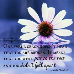 One small crack doesn't mean that you are broken. It means you were put to the test and you didn't fall apart #adversity #broken #strength #life #positivity