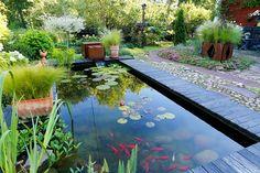 Garden Cottage, Aquarium, Goldfish Bowl, Aquarium Fish Tank, Aquarius, Fish Tank
