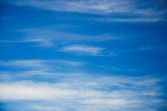 Gulls flying above ocean-like waves. Stavanger June 2016