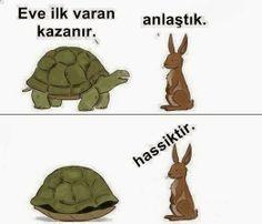 Tosbayla Boşuna Didişme Tavşan Kardeş :)
