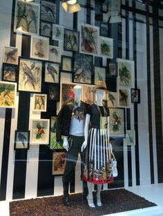 Spring 2014/ Desquared. This is a great window display because it gives you the same effect of a portfolio, except in 3D. I love the concept of the vintage bird watching prints, mixed with modern print, and classic textiles.