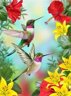 Hummingbird Pictures, Hummingbird Flowers, Hummingbird Garden, Pretty Birds, Beautiful Birds, Hummingbird Painting, How To Attract Hummingbirds, Bird Drawings, Flag Decor