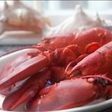 How to Boil and Eat Lobster. Boston Lobster Recipe. |Pinned from PinTo for iPad|