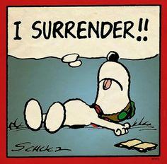 Snoopy - I surrender