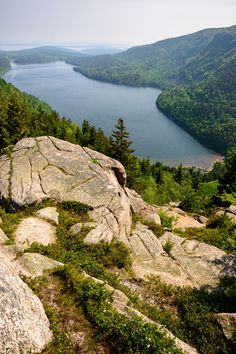 There are 4 campgrounds in Acadia National Park. Campers rate: best for RV camping, tent campsites, closest to the ocean, quietest, best for hiking. Tent Camping, Outdoor Camping, 5th Wheel Travel Trailers, Private Campgrounds, Hunting Outfitters, Acadia National Park Camping, America And Canada, North America, Water In The Morning