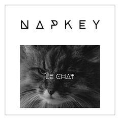 A bien écouter  ;-) Napkey - Le Chat by NAPKEY on SoundCloud : vous aimez ? qui reconnaît la voix ?