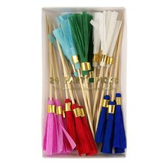 Colored Tassel Party