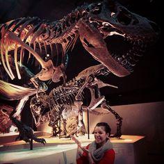 """Fossil T-Rex - @saryahleyton's photo: """"#HMNS #trex #welcometo23"""""""