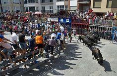 La Diputación abre una convocatoria de ayudas de 100.000 euros para la defensa y el fomento de festejos taurinos en la provincia