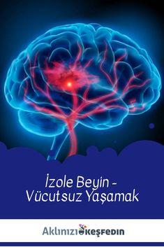 Vücudun çalışması durduktan sonra beynin kendi hayatı olabilir mi? Sinirbilimci Raquel Marín bizi bu konuyu düşünmeye davet eden iki araştırmadan bahsediyor.