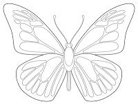 FREE BUTTERFLY PRINTABLE~  Beautiful black and white printable students can use to create their own beautiful designs.
