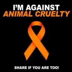 Hell yeah!  And ANYONE who abuses animals are SICK human being.s
