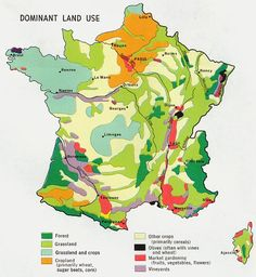 climate maps of france in english | ... what type of vegetation or crops are growing across France