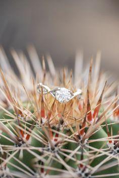 Dreamy Desert Engagement Session in Scottsdale - Melissa Jill Photography