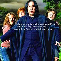.. I always loved you Snape. ; ~ ; Those others can't deny that they hated you.