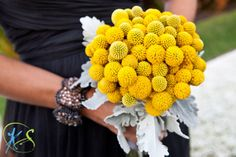 What are these yellow flowers?  This could be fun for the bridesmaids!  I was also thinking I would like Maria (MOH) to have a bouquet that is different from the other bridesmaids because she really wants to stand out, too.