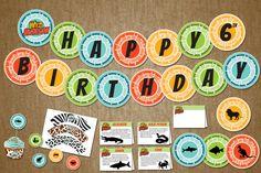 Wild Kratts Birthday Party Pack  Boy Decor by jackaroodesigningco