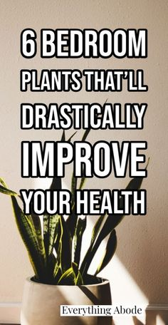 Health Tips, Health And Wellness, Bedroom Plants, Daily Meditation, Fresh And Clean, Natural Health, Indoor Plants, House Plants, Improve Yourself