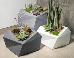 Crescent Garden's range of Origami Planters stand out for their utterly modern geometric silhouettes. Tall Planters, Outdoor Planters, Garden Planters, Modern Planters, Garden Beds, Stone Planters, Concrete Planters, Indoor Garden, Indoor Outdoor