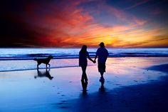 """500px / Photo """"Young Couple In Love Walking On The Beach With Golden Retriever """" by Susan McKenzie"""
