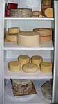 Cheese Cave ... how to set it up ... cheesemaking.com