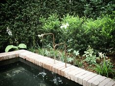 Get Outdoors, The Great Outdoors, Pool Remodel, Backyard Water Feature, Water Features In The Garden, Outdoor Spaces, Outdoor Ideas, Water Garden, Garden Bridge