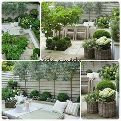 So viele schöne Ideen - Garden trellis ideas - Gardener Small Courtyard Gardens, Small Courtyards, Back Gardens, Small Gardens, Outdoor Gardens, Backyard Patio, Backyard Landscaping, Small Garden Design, Garden Trellis