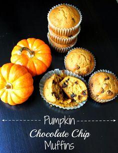 1000+ images about Pumpkin Love on Pinterest | Pumpkin ...