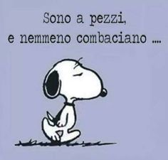 3031 Best Snoopy forever images in 2020 Sarcastic Quotes, Funny Quotes, Funny Links, Snoopy Love, Book Markers, Good Morning Good Night, Funny Images, Words Quotes, Cool Words