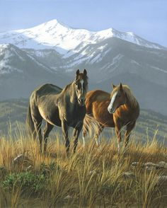 Smoky Valley Mustangs ..-.. Jim Hautman