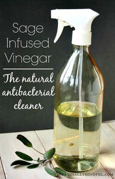 How to Make Sage-Infused Vinegar Cleaning Spray: 2 cups white vinegar with crushed sage leaves, set for 2-4 weeks. Add equal parts water to Sage Vinegar and use as spray cleaner.