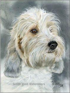 Petit Basset Griffon Vendeen PBGV Dog 15x11 Signed Print. $40.00, via Etsy.