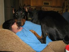 We'll make room...Dobies fit anywhere!!  Make that a Rott and its Chance and Vlad!   lol