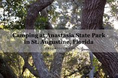 Anastasia State Park in St. Augustine encompasses 1,600 acres and offers many activities including hiking, biking, swimming, kayaking, and fishing. #flstateparks | ERINWIGGLE.COM