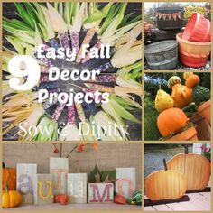 9 Fall Projects, find what you need in your back yard!